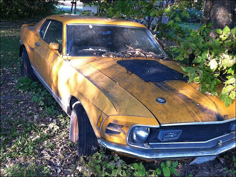 Barn Find: Complete Mustang Mach 1 Left Underneath a Tree - Street ...