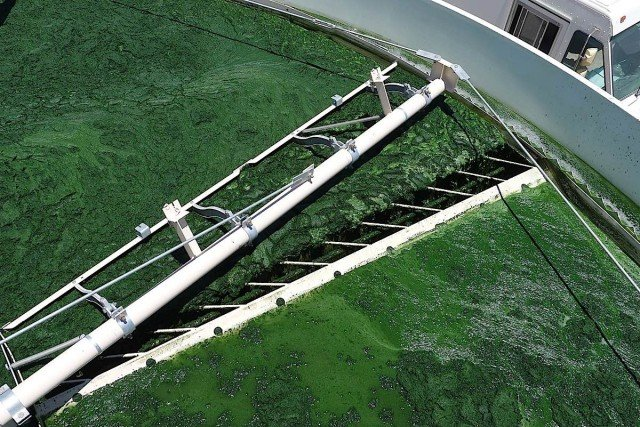 All of the systems at the Green Crude Farm including the harvest system (pictured) will undergo a shakedown process that is designed to confirm the viability of the demonstration algae farm.