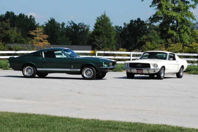 67 Shelby Side