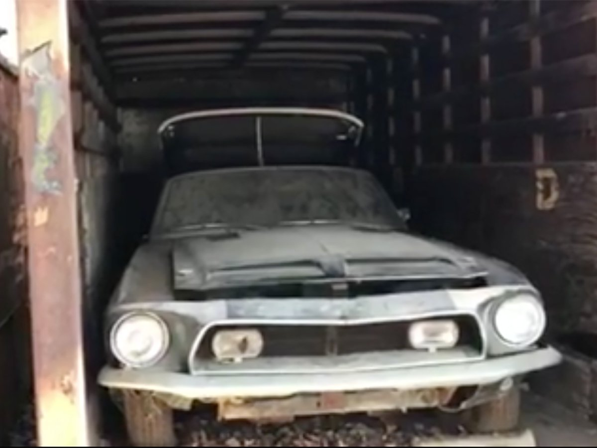 Barn Find 1968 Shelby KR Found In Storage Container