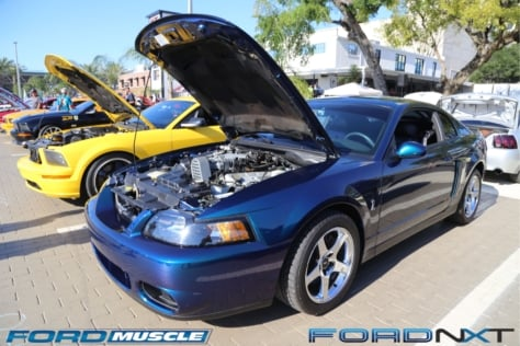 mustang-birthday-party-attracts-one-nearly-every-model-year-2018-04-22_02-40-17_352706