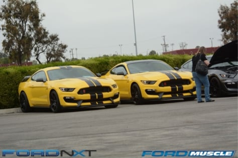 a-gathering-of-snakes-and-more-at-the-carroll-shelby-tribute-show-2018-05-26_03-19-49_325830