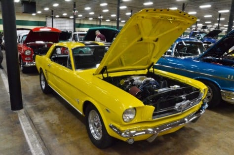 cool-fords-shake-off-the-cabin-fever-in-knoxville-2019-01-15_01-35-06_750764