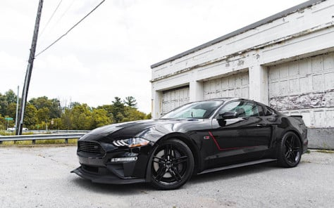 what-factory-tuned-mustang-are-you-dreaming-about-in-2019-2019-01-31_17-58-49_444123